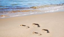 Free Footsteps On The Beach Stock Photography - 6277932