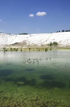 Free Lake In Pamukkale. Ducks On Water. Stock Photography - 6278072