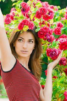 Free Beautiful Woman With Roses Royalty Free Stock Photos - 6278738