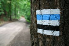 Free Hiking Trail Stock Photography - 6279622