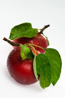 Free Red Apple Royalty Free Stock Photo - 6281545