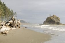 Free LaPush Beach 2 Stock Images - 6282034