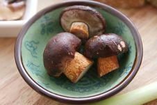 Free Fresh Mushrooms Stock Photos - 6282453