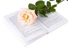 Free The Rose On The Book Royalty Free Stock Images - 6283659