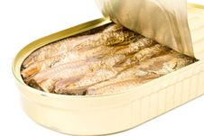 Free Can With Sprats Stock Photo - 6283670