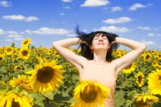Woman In The Field Of Sunflowers Stock Photography