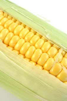 Free Yellow Corn Stock Photo - 6285710