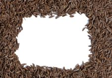 Free Caraway Seed Close-up Royalty Free Stock Photography - 6285927