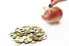 Free Piggy Bank  With Coins Stock Image - 6289031