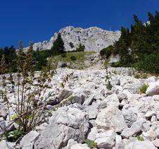 Free Stone Talus On Wendelstein Royalty Free Stock Photos - 6289328