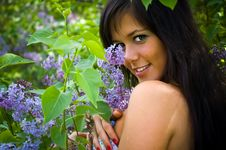 Free The  Girl And Blossoming Lilac Royalty Free Stock Photos - 6289918