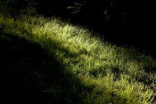 Free Secret Shine Stock Images - 6293134