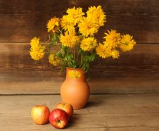 Free Autumn Still Life Royalty Free Stock Photography - 6293827