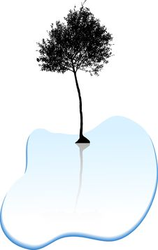 Free Tree Silhouette. Royalty Free Stock Photography - 6294507