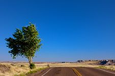 Free An Open Desert Highway Royalty Free Stock Photo - 6295065
