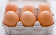 Free Eggs Royalty Free Stock Images - 6296399