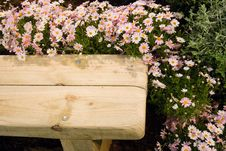 Free Wooden Bench Stock Photography - 6296472