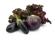 Free Aubergine And Cabage On White Stock Images - 6298124