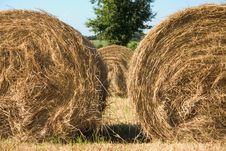 Free Two Hay  Bales Royalty Free Stock Images - 6298439