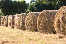 Free Hay  Bales Stock Images - 6298474