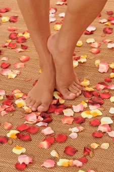 Feet On Flower Petals Royalty Free Stock Image