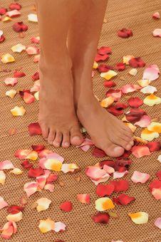 Feet On Flower Petals Royalty Free Stock Photos
