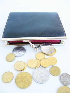 Free Purse With Money Stock Photo - 6298750