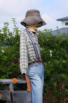 Free Scarecrow Stock Photography - 6299612