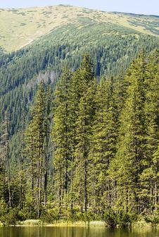 Free Mountain Lake Royalty Free Stock Image - 6299716