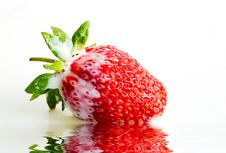 Free Strawberry In Milk Royalty Free Stock Photos - 6299728