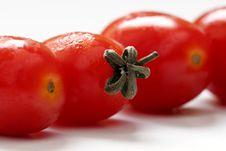 Free Mini Tomato Royalty Free Stock Images - 6299809