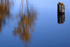 Free Lake Stock Photos - 631513