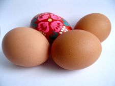 Free Eggs Stock Images - 632444
