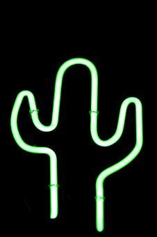 Free Neon Suaguaro Stock Photos - 633283