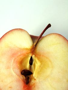 Free Apple Slice Royalty Free Stock Images - 633499