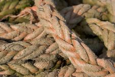 Free Red Rope 1 Stock Photos - 635713