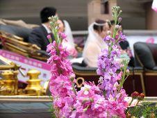 Free Wedding In China Stock Image - 637101