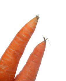Two Carrots Stock Image