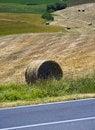 Free TUSCANY  Countryside With Hay-ball Royalty Free Stock Photo - 6307515