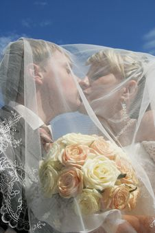 Free Kiss Of A Newly-married Couple Stock Photography - 6300492