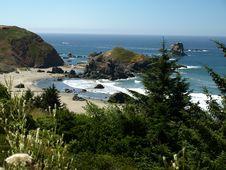 Free Oregon Coast Royalty Free Stock Images - 6305079