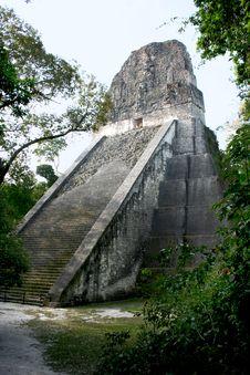 Tikal Pyramid Stock Image