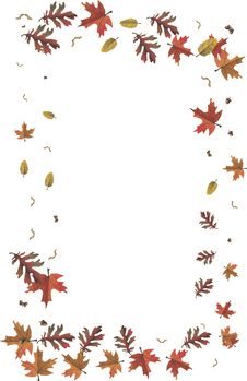 Free Leaves Royalty Free Stock Photo - 6306355