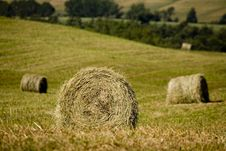 TUSCANY  Countryside With Hay-ball Royalty Free Stock Photography