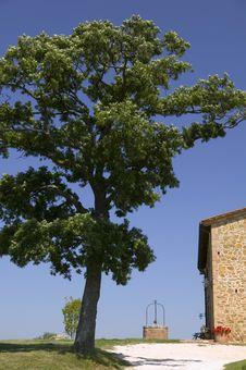 Free TUSCANY Farm And Great Tree Stock Photos - 6307423