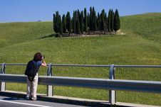 TUSCANY Countryside With Cypress Stock Photos