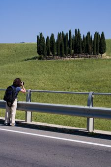Free TUSCANY Countryside With Cypress Stock Photos - 6307583