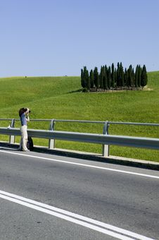 Free TUSCANY Countryside With Cypress Stock Photography - 6308812