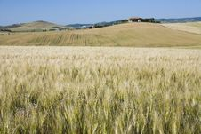 Free TUSCANY Countryside With Distant Farm And Meadow Stock Images - 6309374