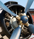 Free Propeller Of Old Airplane Royalty Free Stock Photos - 6313898